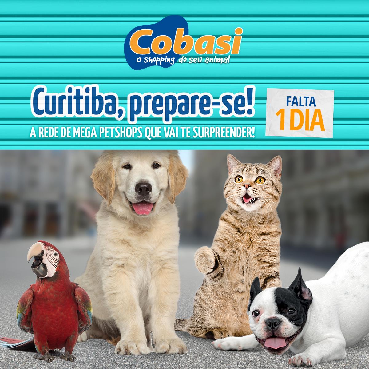 atelie-da-propaganda-cobasi-midias-sociais-6